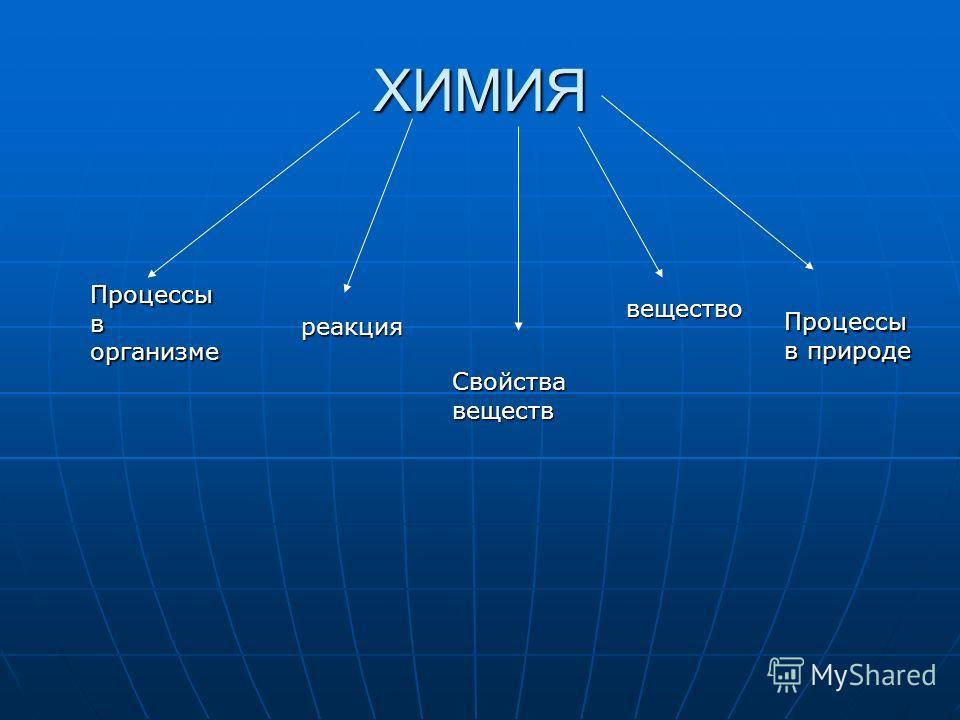 ХИМИЯ Процессы в организме реакция Свойства веществ вещество Процессы в природе