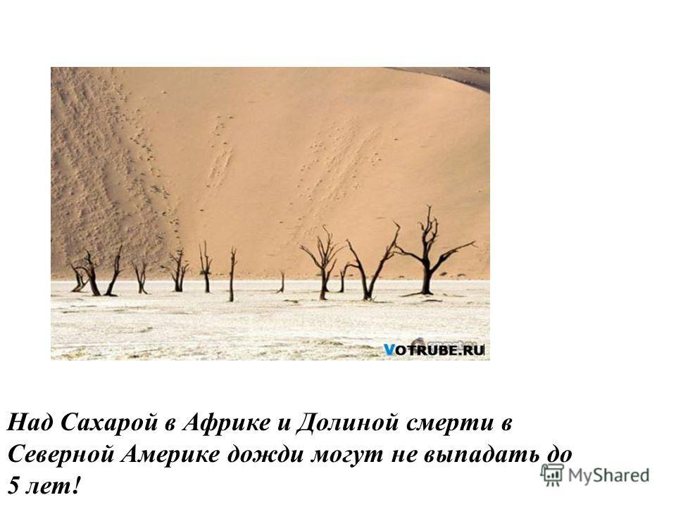 Над Сахарой в Африке и Долиной смерти в Северной Америке дожди могут не выпадать до 5 лет!