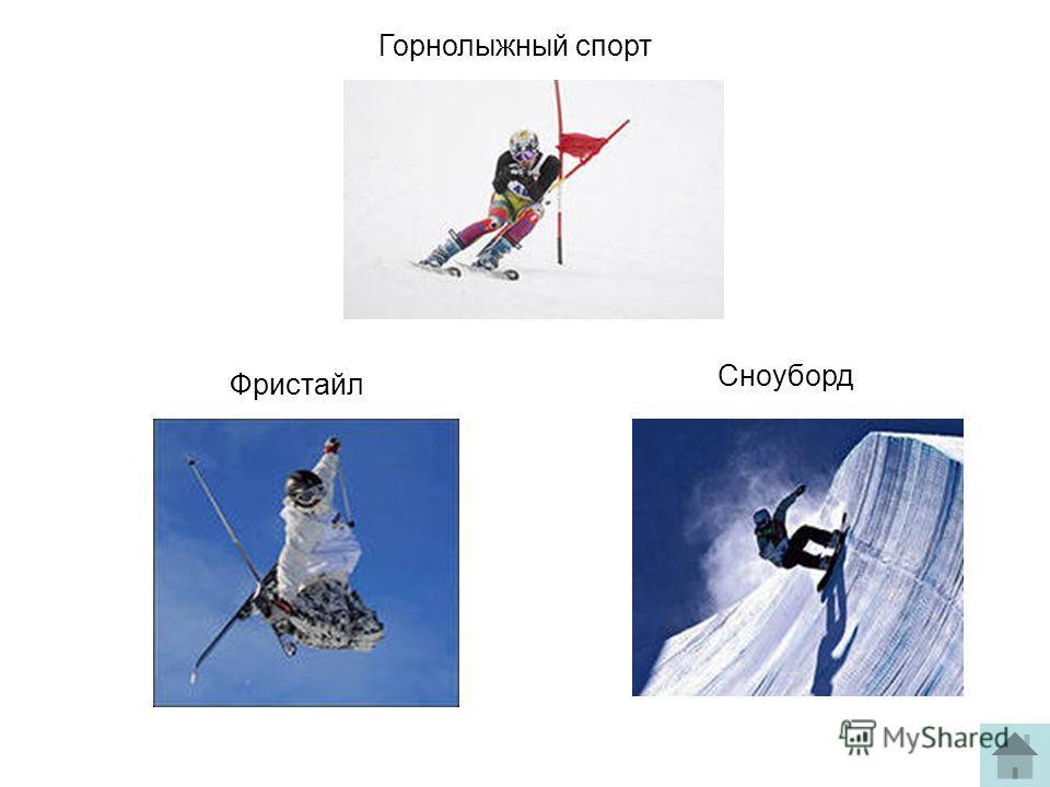 Горнолыжный спорт Фристайл Сноуборд