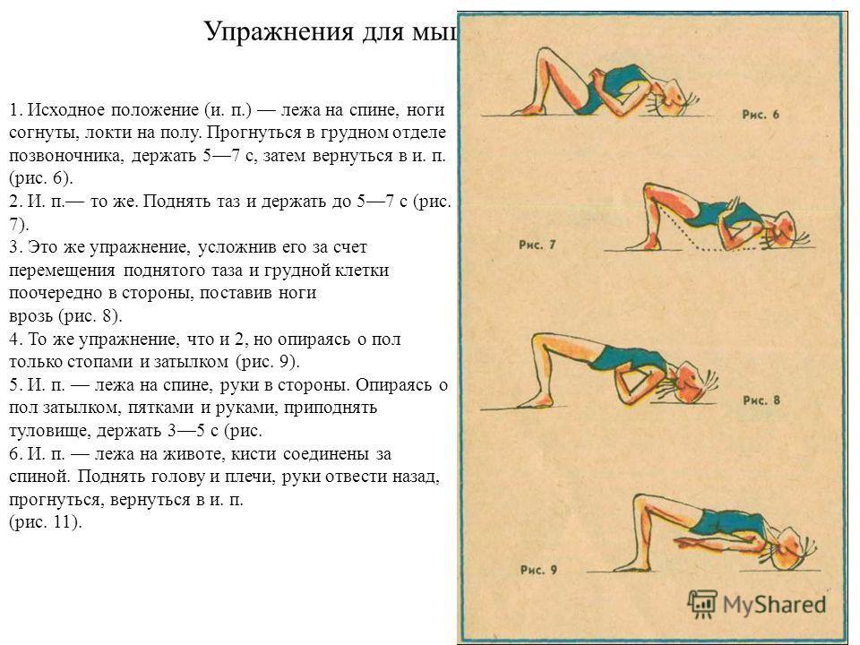 Упражнения для мышц спины 1. Исходное положение (и. п.) лежа на спине, ноги согнуты, локти на полу. Прогнуться в грудном отделе позвоночника, держать 57 с, затем вернуться в и. п. (рис. 6). 2. И. п. то же. Поднять таз и держать до 57 с (рис. 7). 3. Э