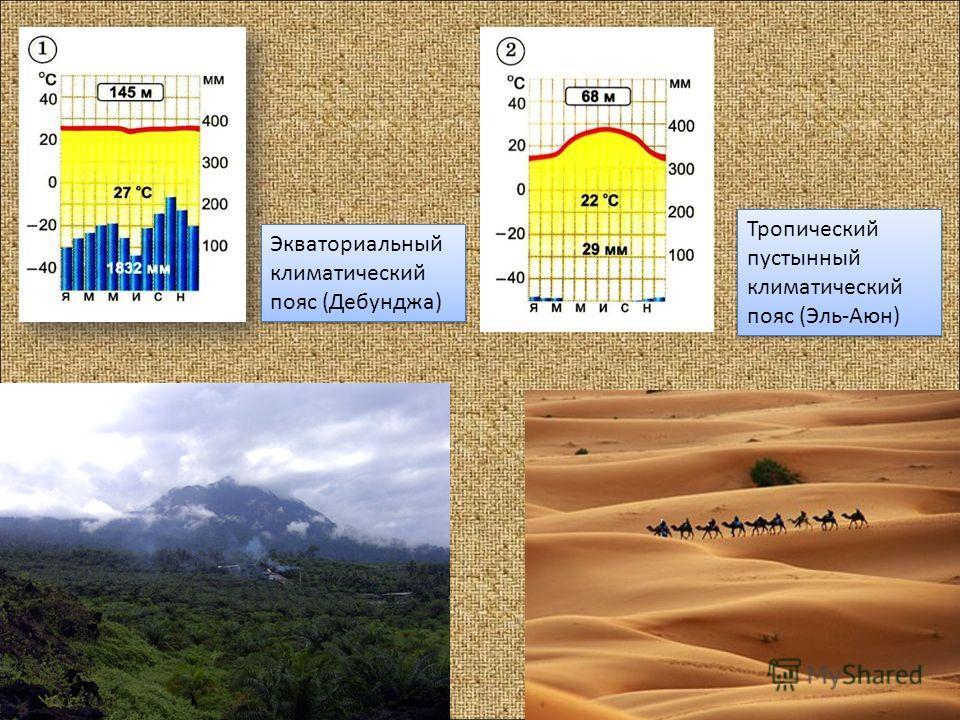 Экваториальный климатический пояс (Дебунджа) Экваториальный климатический пояс (Дебунджа) Тропический пустынный климатический пояс (Эль-Аюн) Тропический пустынный климатический пояс (Эль-Аюн)