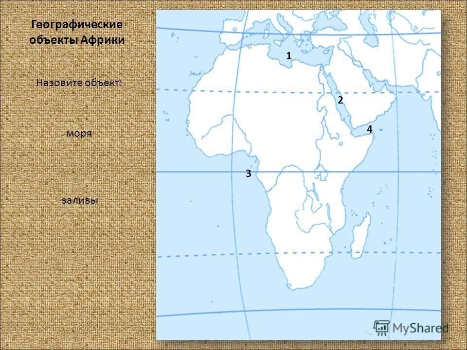 Географические объекты Африки Назовите объект: моря заливы 1 2 3 4