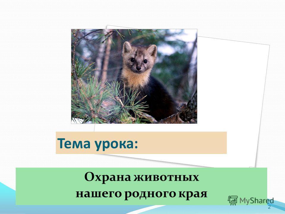 Тема урока: Охрана животных нашего родного края 2
