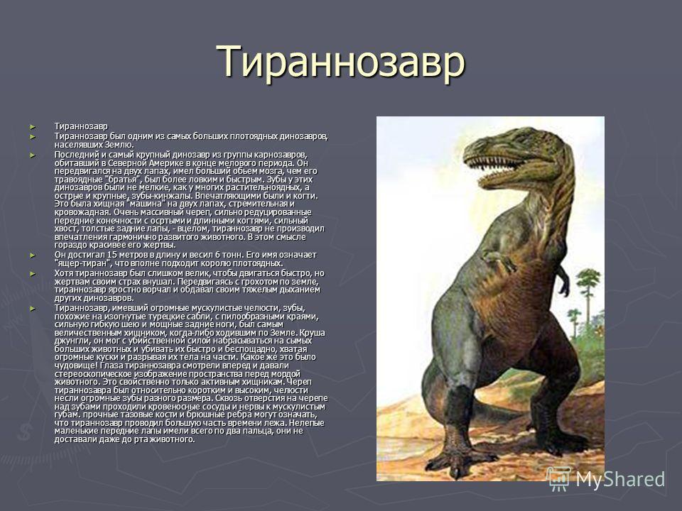 Тираннозавр Тираннозавр Тираннозавр Тираннозавр был одним из самых больших плотоядных динозавров, населявших Землю. Тираннозавр был одним из самых больших плотоядных динозавров, населявших Землю. Последний и самый крупный динозавр из группы карнозавр