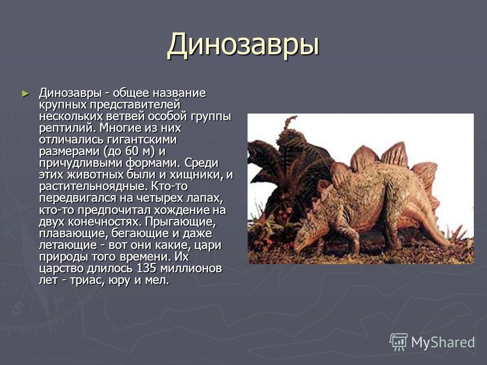 Динозавры Динозавры - общее название крупных представителей нескольких ветвей особой группы рептилий. Многие из них отличались гигантскими размерами (до 60 м) и причудливыми формами. Среди этих животных были и хищники, и растительноядные. Кто-то пере