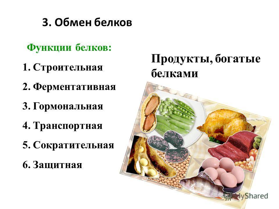 3. Обмен белков Продукты, богатые белками Функции белков: 1.Строительная 2.Ферментативная 3.Гормональная 4.Транспортная 5.Сократительная 6.Защитная