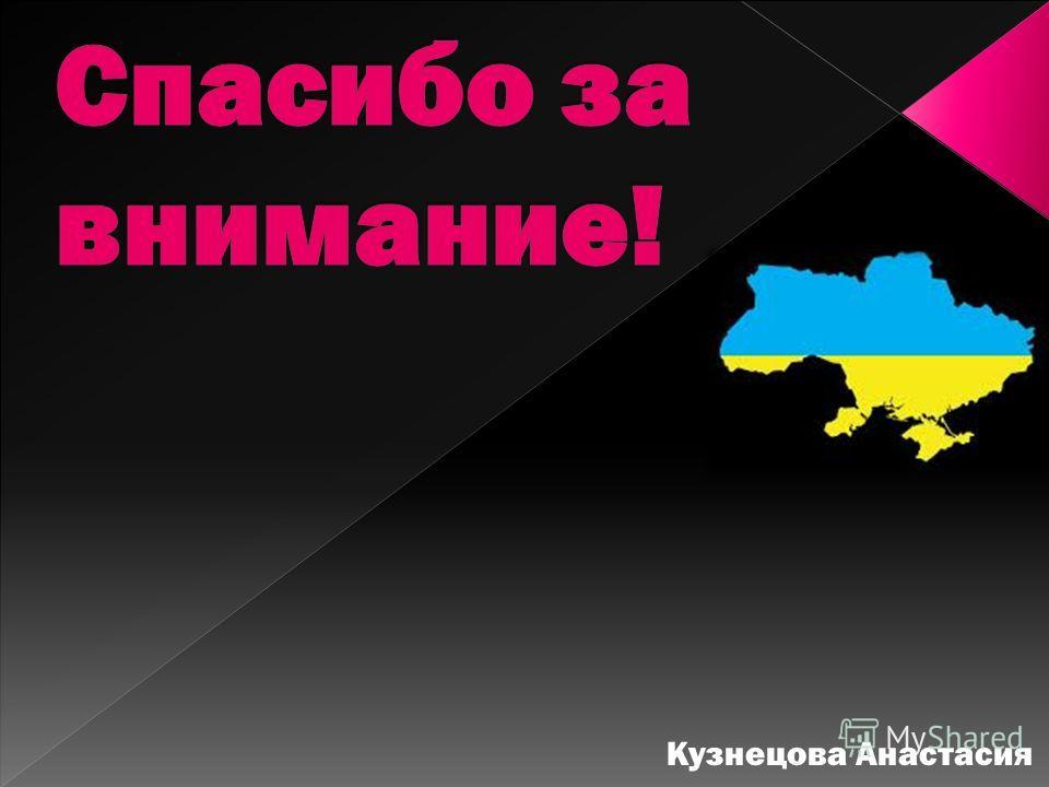Кузнецова Анастасия