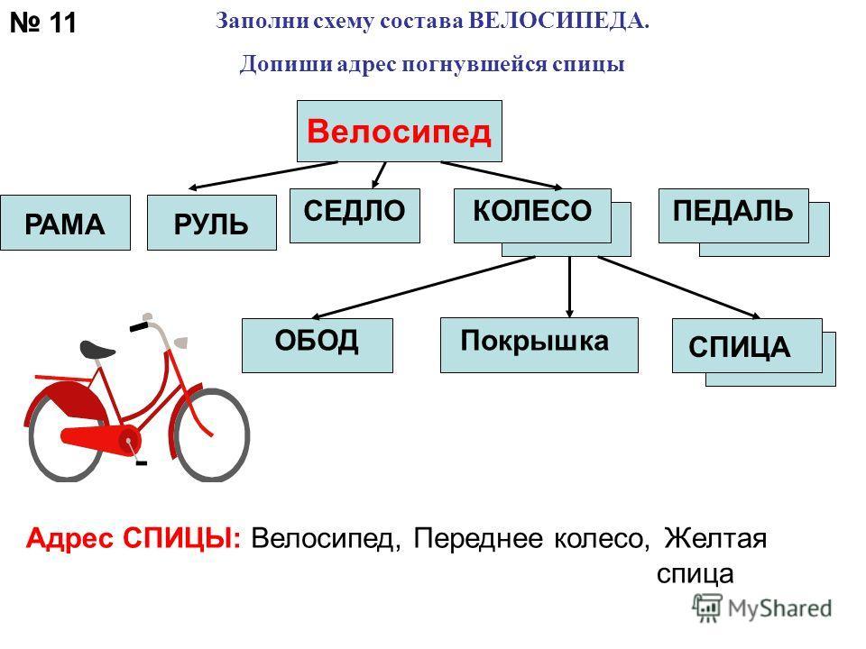 Адрес СПИЦЫ:Велосипед, Переднее колесо, Желтая спица 11 Велосипед РАМАРУЛЬ Заполни схему состава ВЕЛОСИПЕДА. Допиши адрес погнувшейся спицы ПЕДАЛЬСЕДЛОКОЛЕСО СПИЦА ОБОДПокрышка