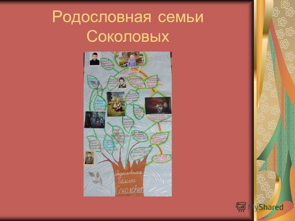 Родословная семьи Соколовых