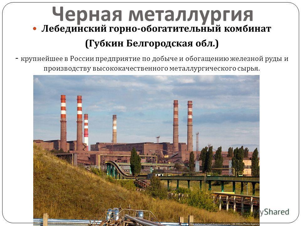 знакомства губкин белгородская обл