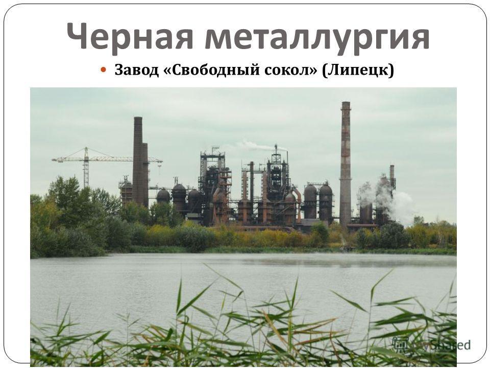 Черная металлургия Завод « Свободный сокол » ( Липецк )