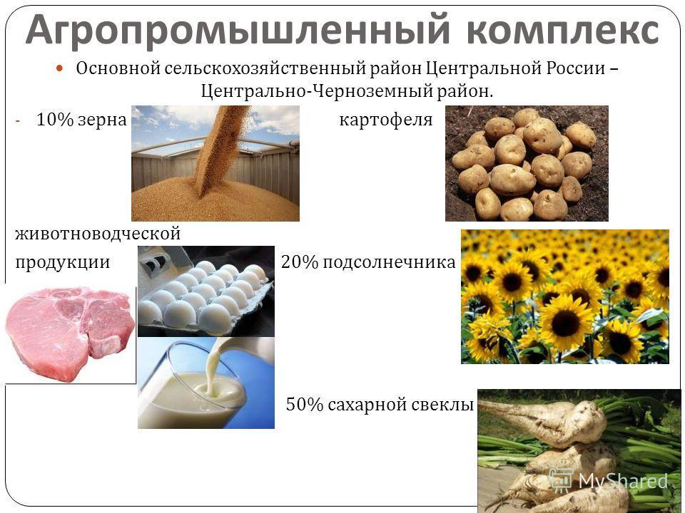 Агропромышленный комплекс Основной сельскохозяйственный район Центральной России – Центрально - Черноземный район. - 10% зерна картофеля животноводческой продукции 20% подсолнечника 50% сахарной свеклы