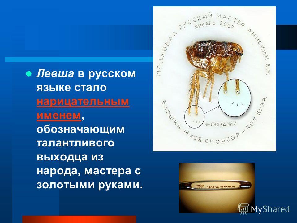 Левша в русском языке стало нарицательным именем, обозначающим талантливого выходца из народа, мастера с золотыми руками. нарицательным именем