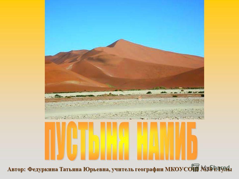 Автор: Федуркина Татьяна Юрьевна, учитель географии МКОУСОШ 38 г.Тулы