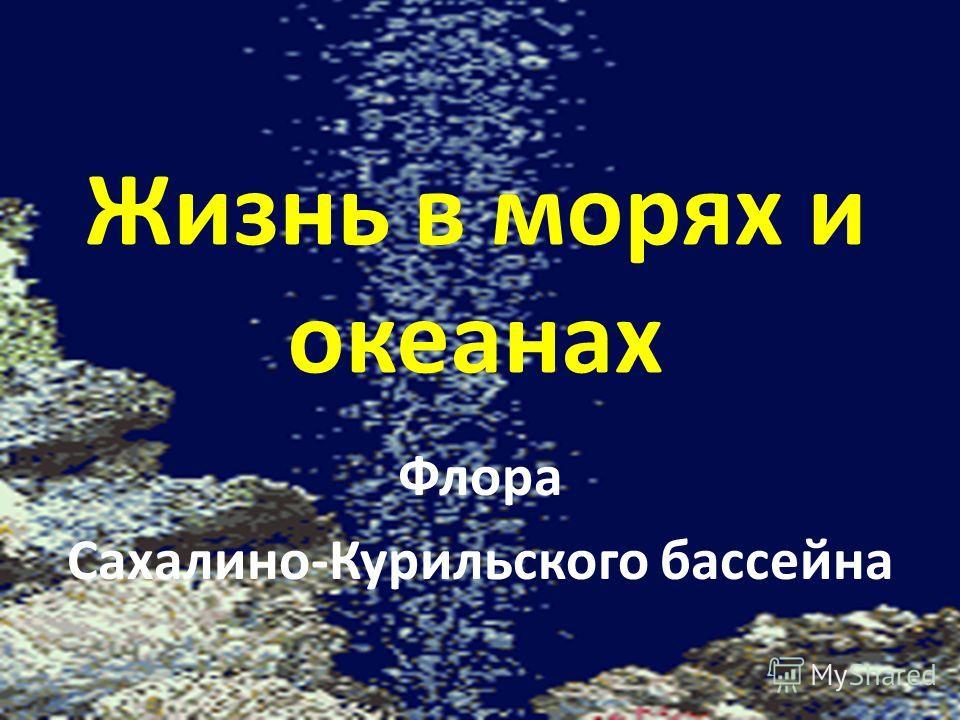 Жизнь в морях и океанах Флора Сахалино-Курильского бассейна