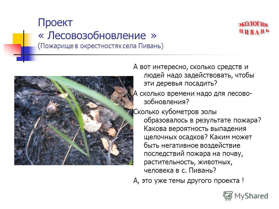 Проект « Лесовозобновление » ( Пожарище в окрестностях села Пивань) А вот интересно, сколько средств и людей надо задействовать, чтобы эти деревья посадить? А сколько времени надо для лесово- зобновления? Сколько кубометров золы образовалось в резуль