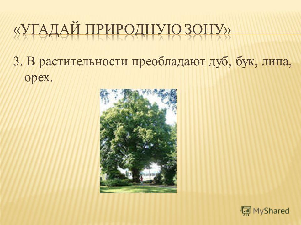 3. В растительности преобладают дуб, бук, липа, орех.