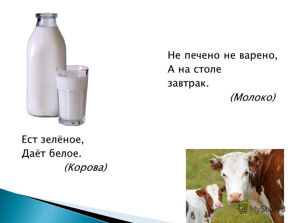 Не печено не варено, А на столе завтрак. (Молоко) Сама пестрая, Ест зелёное, Даёт белое. (Корова)