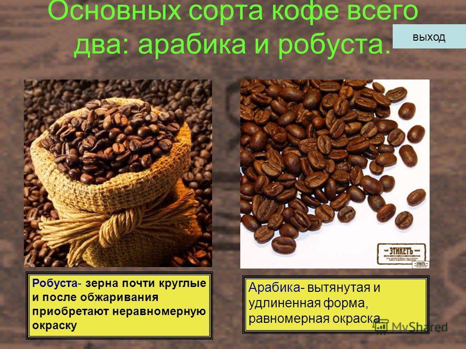 Основных сорта кофе всего два: арабика и робуста. Робуста- зерна почти круглые и после обжаривания приобретают неравномерную окраску Арабика- вытянутая и удлиненная форма, равномерная окраска. выход