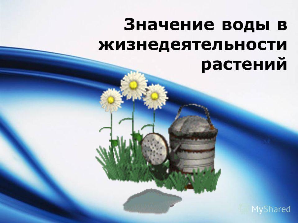 LOGO Значение воды в жизнедеятельности растений