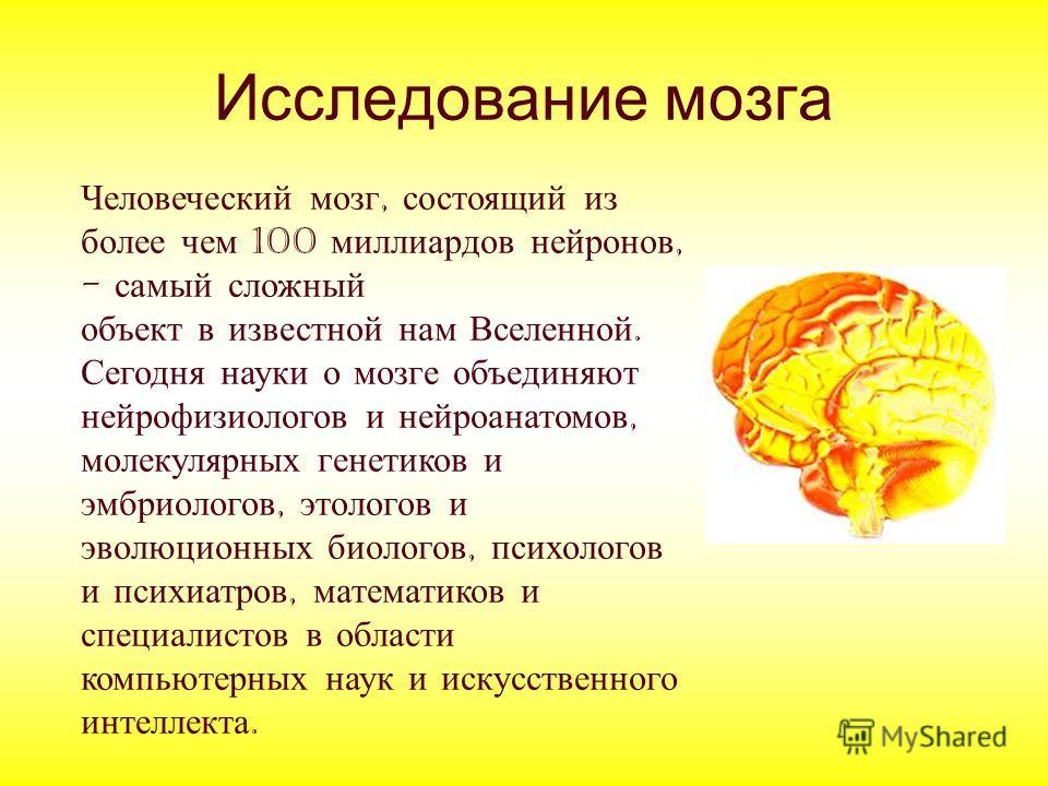 мозга Человеческий мозг,