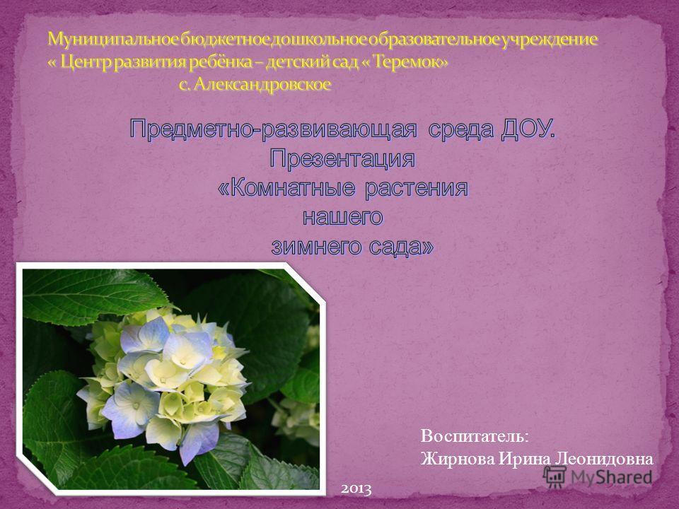 Воспитатель: Жирнова Ирина Леонидовна 2013
