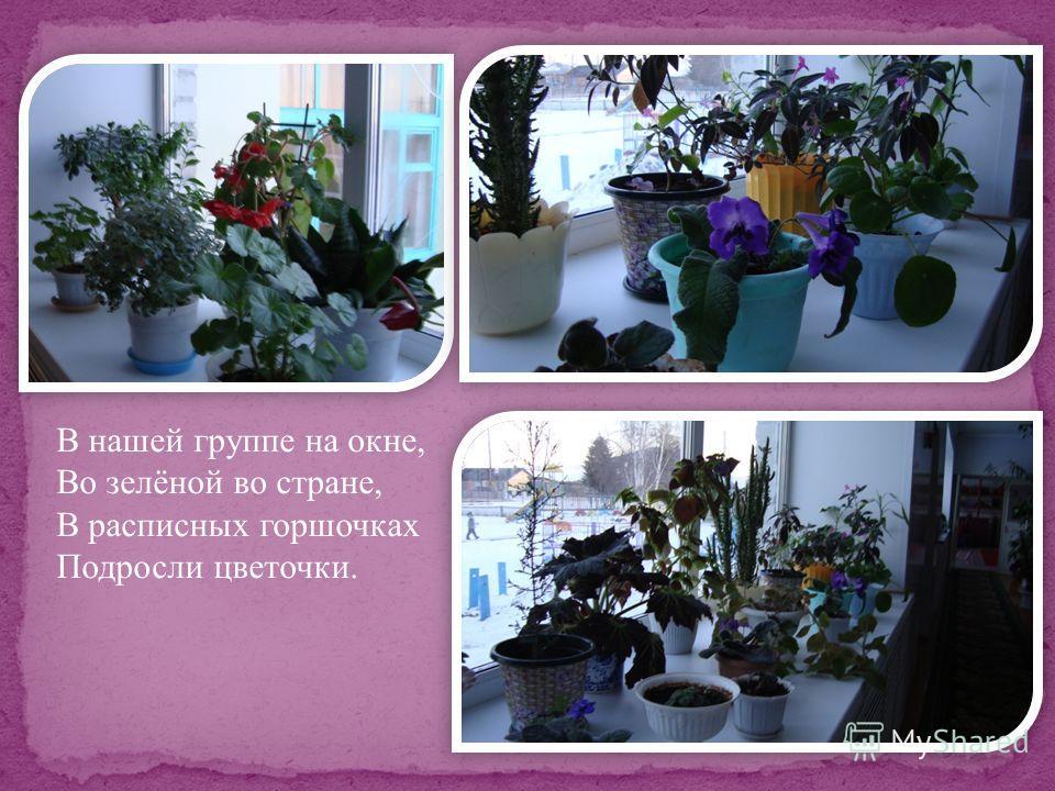 В нашей группе на окне, Во зелёной во стране, В расписных горшочках Подросли цветочки.