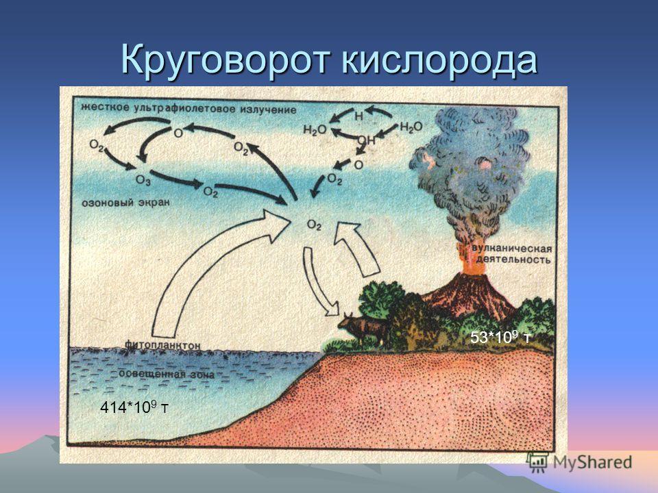 Круговорот кислорода 414*10 9 т 53*10 9 т