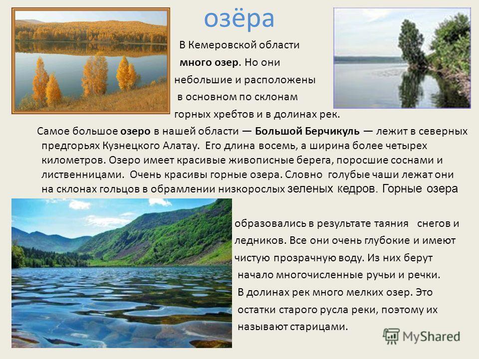 озёра В Кемеровской области много озер. Но они небольшие и расположены в основном по склонам горных хребтов и в долинах рек. Самое большое озеро в нашей области Большой Берчикуль лежит в северных предгорьях Кузнецкого Алатау. Его длина восемь, а шири
