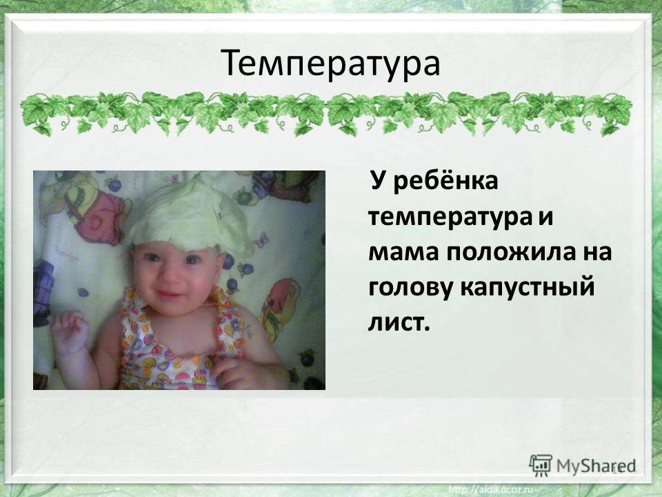 Температура У ребёнка температура и мама положила на голову капустный лист. 14