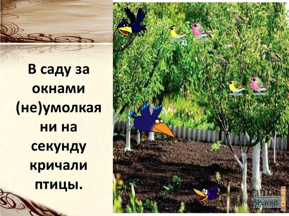 В саду за окнами (не)умолкая ни на секунду кричали птицы.