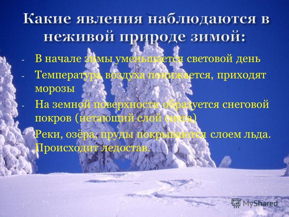 - В начале зимы уменьшается световой день - Температура воздуха понижается, приходят морозы - На земной поверхности образуется снеговой покров (нетающий слой снега) - Реки, озёра, пруды покрываются слоем льда. Происходит ледостав.