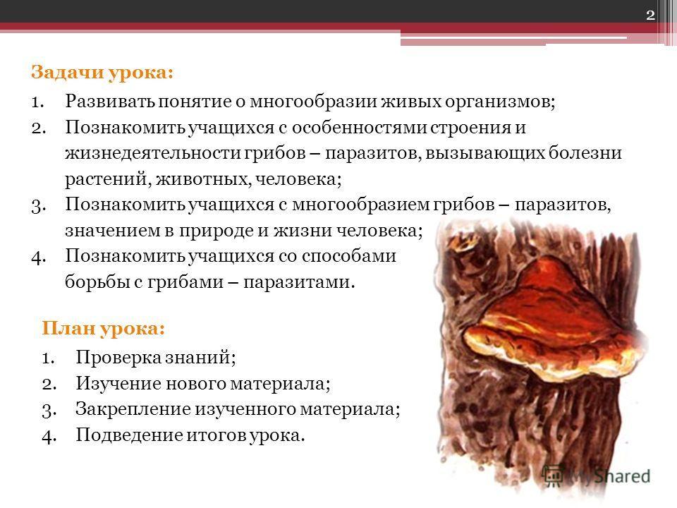 Задачи урока: 1.Развивать понятие о многообразии живых организмов; 2.Познакомить учащихся с особенностями строения и жизнедеятельности грибов – паразитов, вызывающих болезни растений, животных, человека; 3.Познакомить учащихся с многообразием грибов
