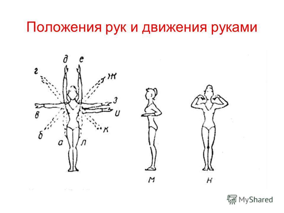 Положения рук и движения руками