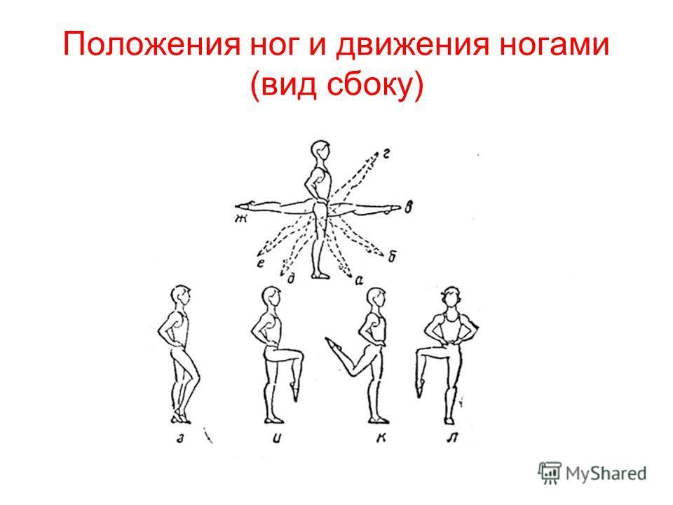 Положения ног и движения ногами (вид сбоку)