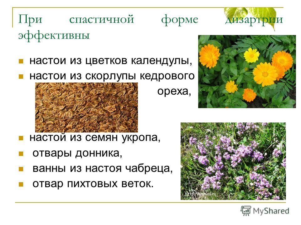 При спастичной форме дизартрии эффективны настои из цветков календулы, настои из скорлупы кедрового ореха, настой из семян укропа, отвары донника, ванны из настоя чабреца, отвар пихтовых веток.