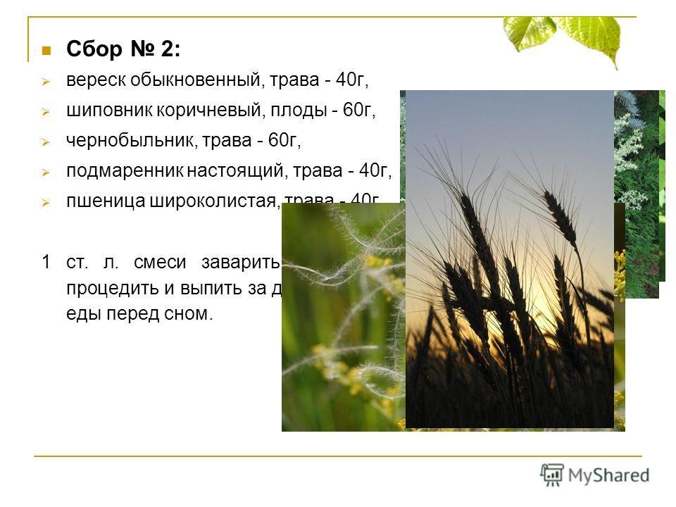 Сбор 2: вереск обыкновенный, трава - 40г, шиповник коричневый, плоды - 60г, чернобыльник, трава - 60г, подмаренник настоящий, трава - 40г, пшеница широколистая, трава - 40г. 1 ст. л. смеси заварить 0,5л кипятка, настаивать 30 минут, процедить и выпит