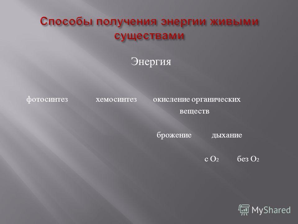 Энергия фотосинтез хемосинтез окисление органических веществ брожение дыхание с О 2 без О 2