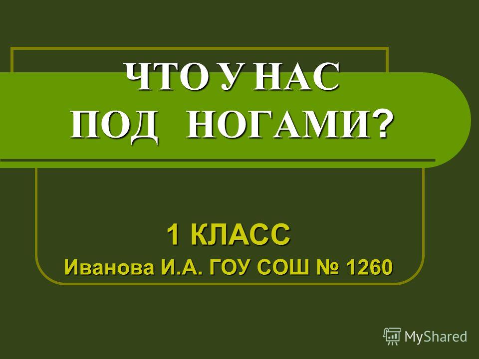 ЧТО У НАС ПОД НОГАМИ? 1 КЛАСС Иванова И.А. ГОУ СОШ 1260