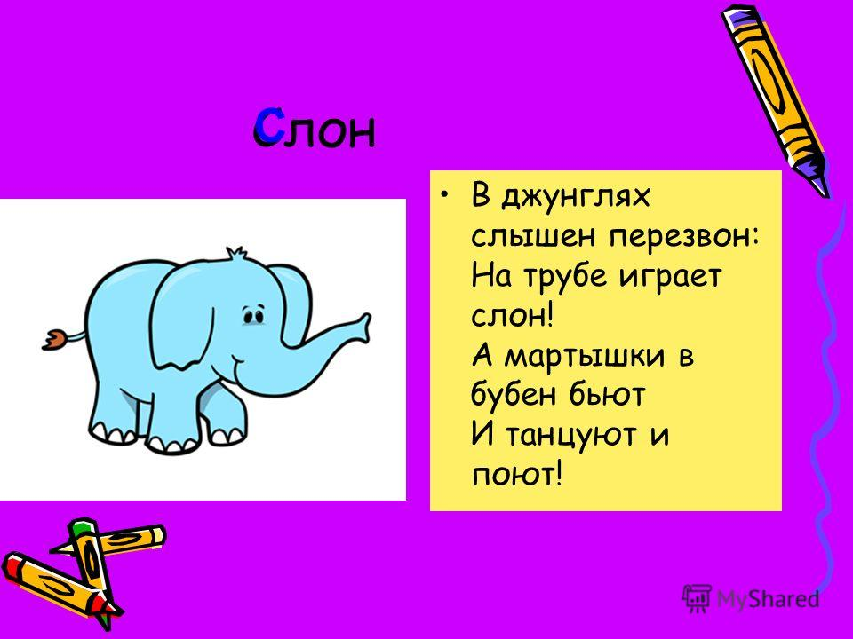 В джунглях слышен перезвон: На трубе играет слон! А мартышки в бубен бьют И танцуют и поют! С