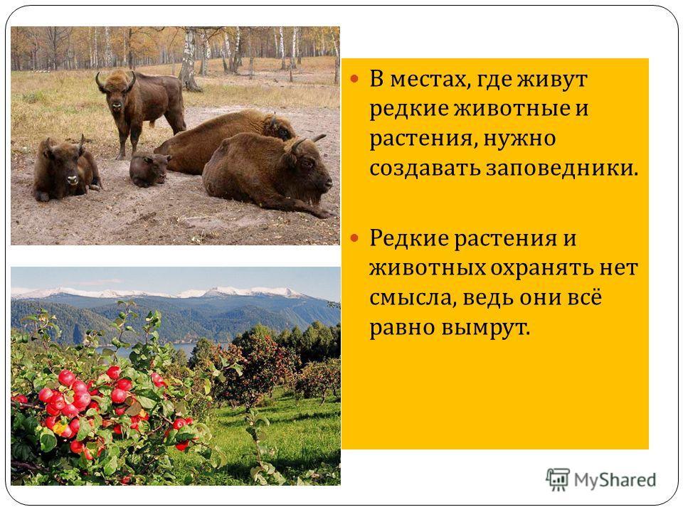 В местах, где живут редкие животные и растения, нужно создавать заповедники. Редкие растения и животных охранять нет смысла, ведь они всё равно вымрут.