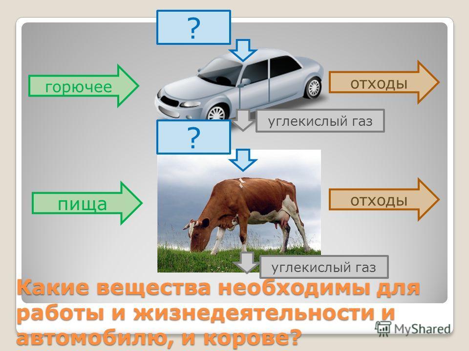 Какие вещества необходимы для работы и жизнедеятельности и автомобилю, и корове? горючее пища отходы углекислый газ ? ?