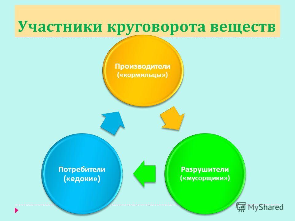 Участники круговорота веществ Производители (« кормильцы ») Разрушители (« мусорщики ») Потребители (« едоки »)