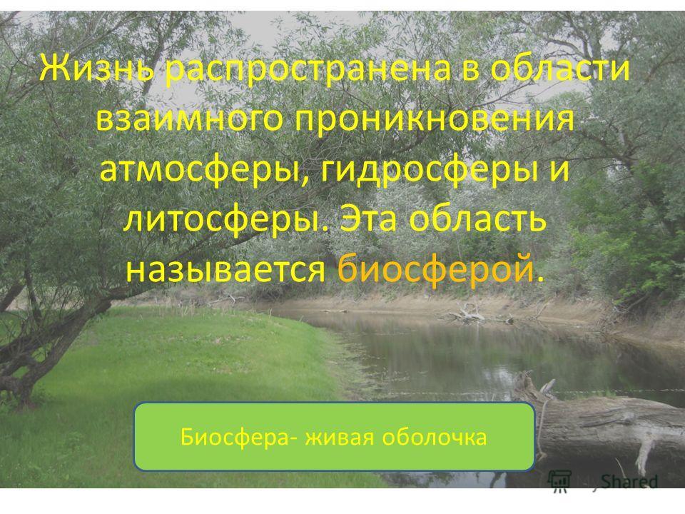 Жизнь распространена в области взаимного проникновения атмосферы, гидросферы и литосферы. Эта область называется биосферой. Биосфера- живая оболочка