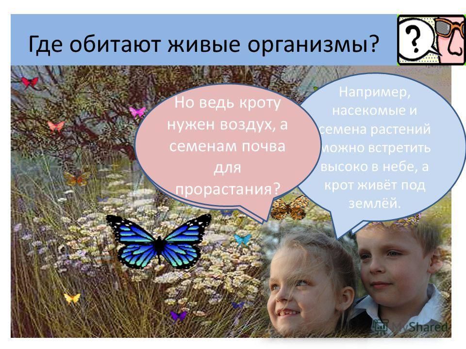 Где обитают живые организмы? Я знаю, что живые организмы обитают на поверхности Земли. Не только, они живут всюду. Например, насекомые и семена растений можно встретить высоко в небе, а крот живёт под землёй. Но ведь кроту нужен воздух, а семенам поч