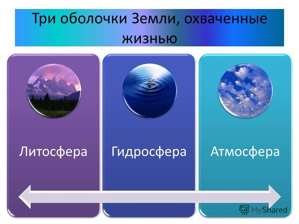 Три оболочки Земли, охваченные жизнью ЛитосфераГидросфераАтмосфера