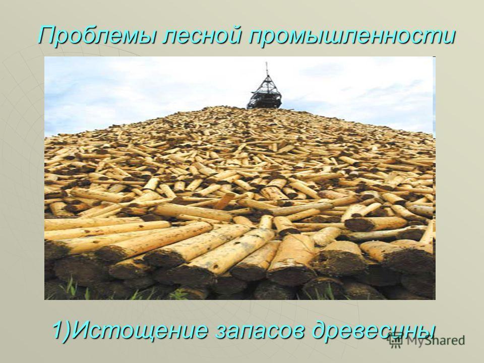 1)Истощение запасов древесины Проблемы лесной промышленности