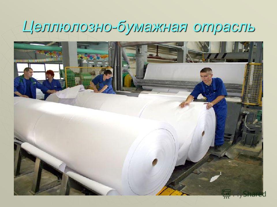 Целлюлозно-бумажная отрасль