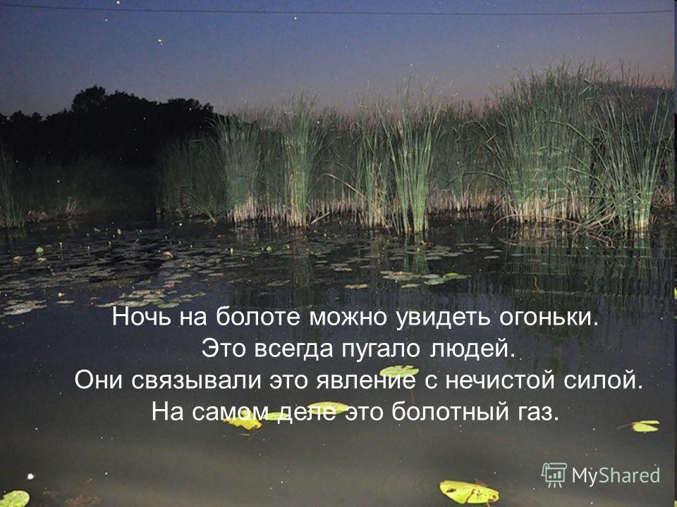 Ночь на болоте можно увидеть огоньки. Это всегда пугало людей. Они связывали это явление с нечистой силой. На самом деле это болотный газ.