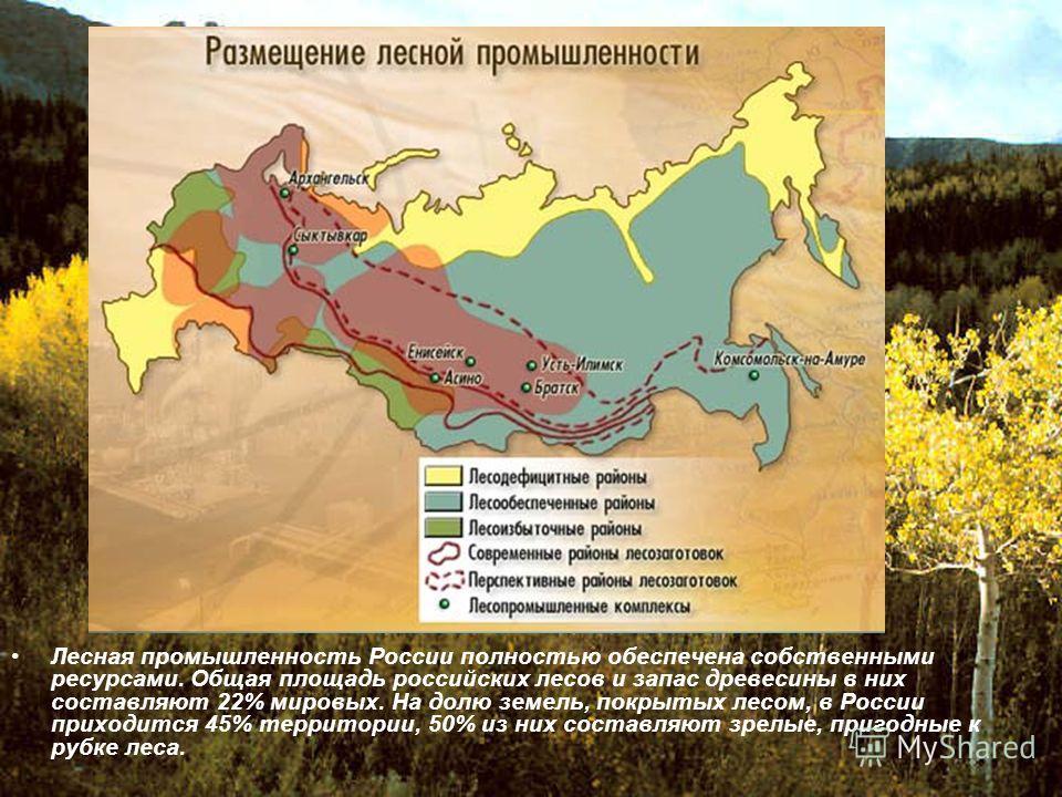 Лесная промышленность России полностью обеспечена собственными ресурсами. Общая площадь российских лесов и запас древесины в них составляют 22% мировых. На долю земель, покрытых лесом, в России приходится 45% территории, 50% из них составляют зрелые,